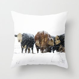 Cattle in a Snowstorm in SouthWest Michigan Throw Pillow