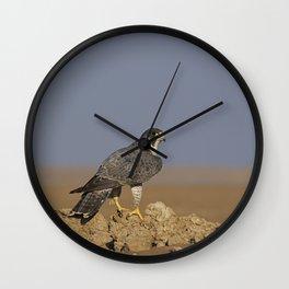 Falcon Scape Wall Clock