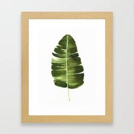 Nature leaves II Framed Art Print