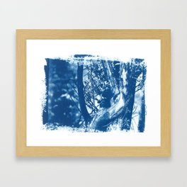 Histoire d'arbre, cyanotype. Framed Art Print