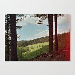 OF ISOLATION Canvas Print