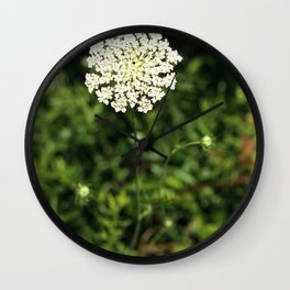 Queen Anne's Lace. Wall Clock
