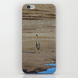 A Little Side Steppin iPhone Skin