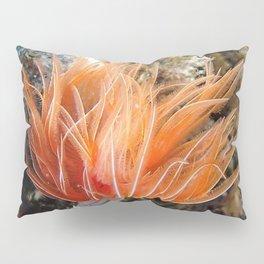 Orange spirograph sailor background | Fond Marin spirographe Pillow Sham
