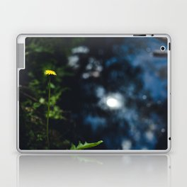 Reflection in the river Laptop & iPad Skin