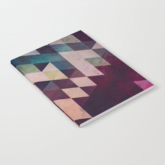 rycynstryckzhn Notebook