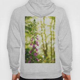 the height of summer Hoody