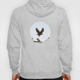 Wedge-Tailed Eagle (Aquila audax fleayi) Hoody
