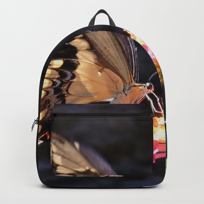 Swallowtail Overexposed Backpack