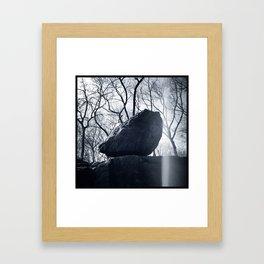 'CENTRAL PARK ROCK' Framed Art Print