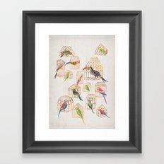 Architectural Aviary Framed Art Print