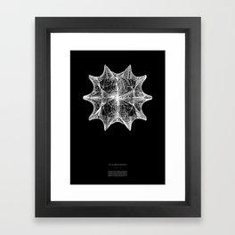 The Calabi-Yau Manifold Framed Art Print