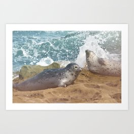 Seal of No Approval Art Print