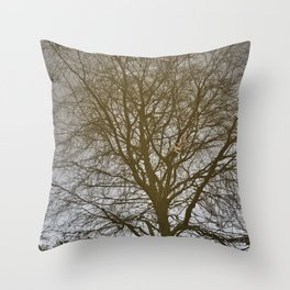 Reflection #2 - Chester canals Throw Pillow