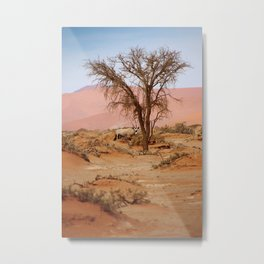 NAMIBIA ... Sossusvlei Oryx I Metal Print