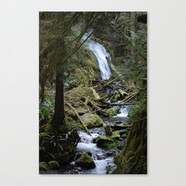 Marymere Falls Canvas Print