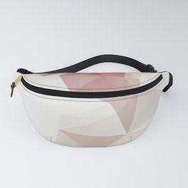 Tunnel Fanny Pack