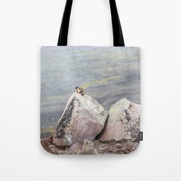 Extremal Groundhog  or King of the Mountain Tote Bag