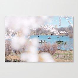 new york spring Canvas Print