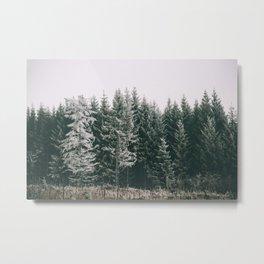 Winter VIII Metal Print