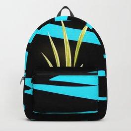 Evening sun Backpack