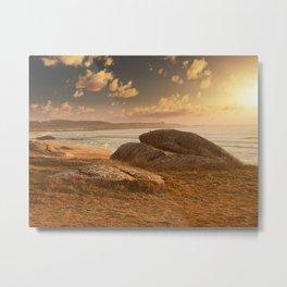 Roca Metal Print