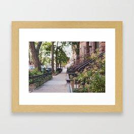 Walking through Chicago Framed Art Print