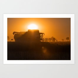 Midsummer time is harvest time of the cereal fields Art Print