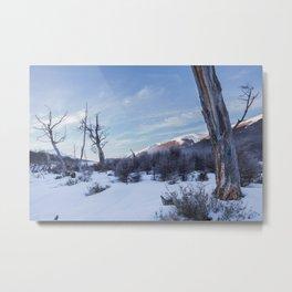 Ushuaia´s Landscape Metal Print