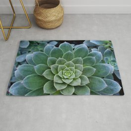 Shades of Succulent Green Rug