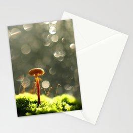 Mushroom In The Morning Light... Stationery Cards