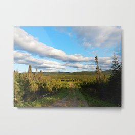 Big Skies over Mountain Trail Metal Print