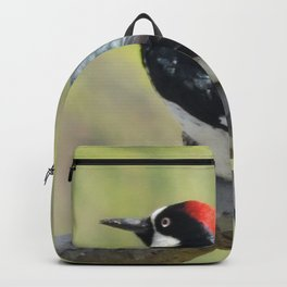 Acorn Woodpecker At Rest Backpack