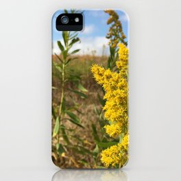 Tennessee Goldenrod iPhone Case