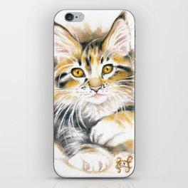 Maine Coon Kitty iPhone Skin