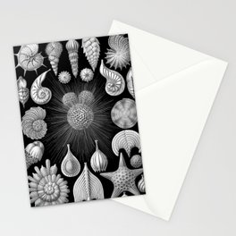 Sea Shells and Starfish (Thalamophora) by Ernst Haeckel Stationery Cards