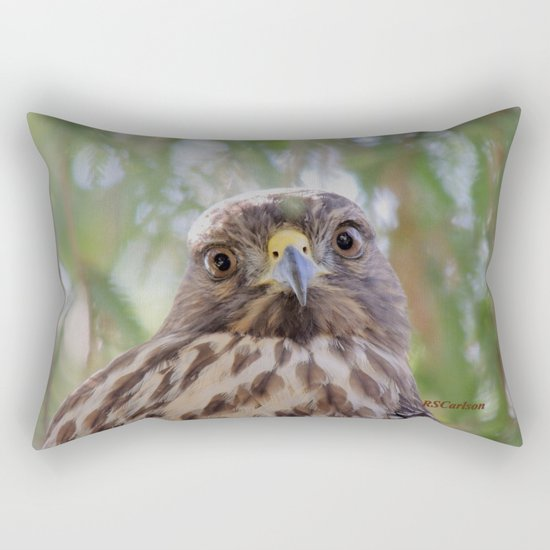 Hawk Eyes in the Willow Rectangular Pillow