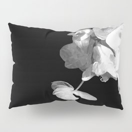 White Orchids Black Background Pillow Sham