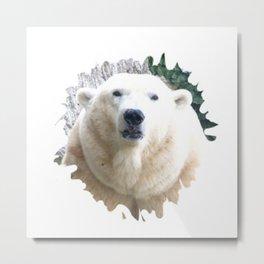 Polar Baer Metal Print