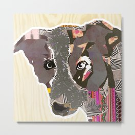 Bordercollie Collage on wooden Background Metal Print