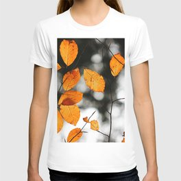 Orange Leafs (Color) T-shirt