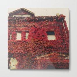 lingonberry red Metal Print