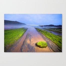 Night at the beach Canvas Print