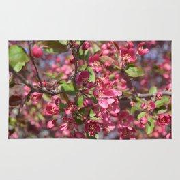 Spring Bloom Rug