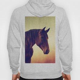 Western horse in porträit Hoody