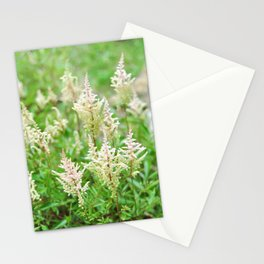 Deer Isle Series: Run Through the Meadow Stationery Cards