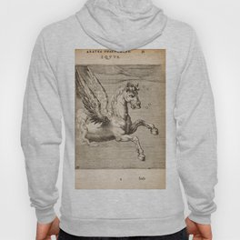 Hugo de Groot's Syntagma Arateorum 1600 - 15 Equus or Pegasus Hoody