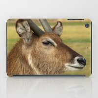 elk iPad Cases featuring Elk by Raymond Earley