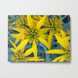 Beautiful Wildflowers Metal Print