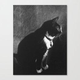 Mittens Canvas Print